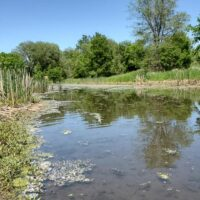 Protecting the Starkweather Creek watershed